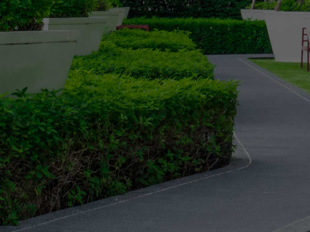 Jesup Commercial Landscaping