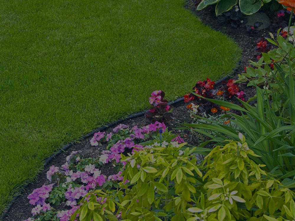 Jesup Garden Design