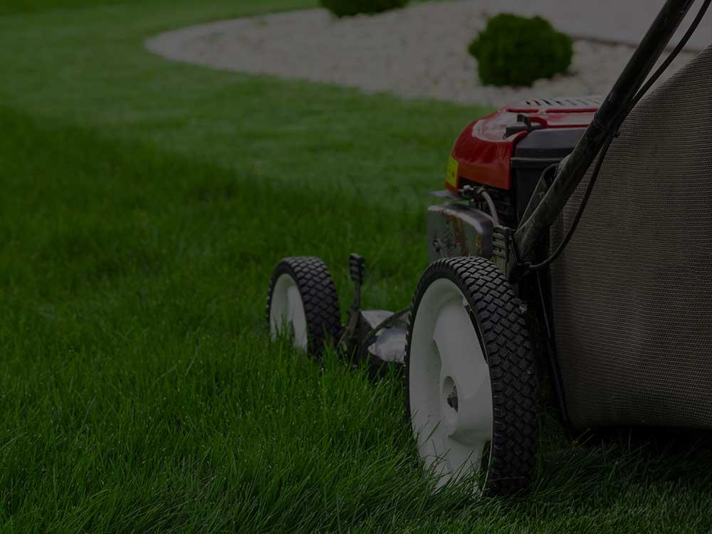 Jesup Lawn Mowing