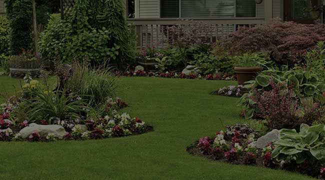 Screven Landscape Design
